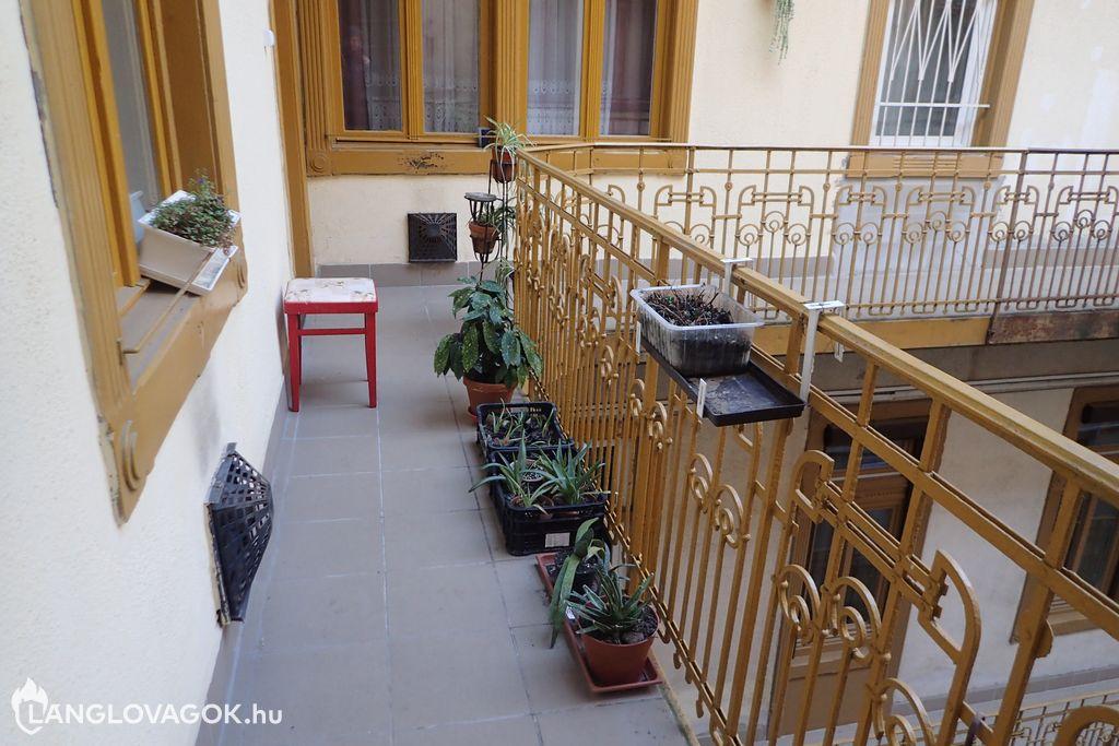 Növények lakóépületek menekülési útvonalán