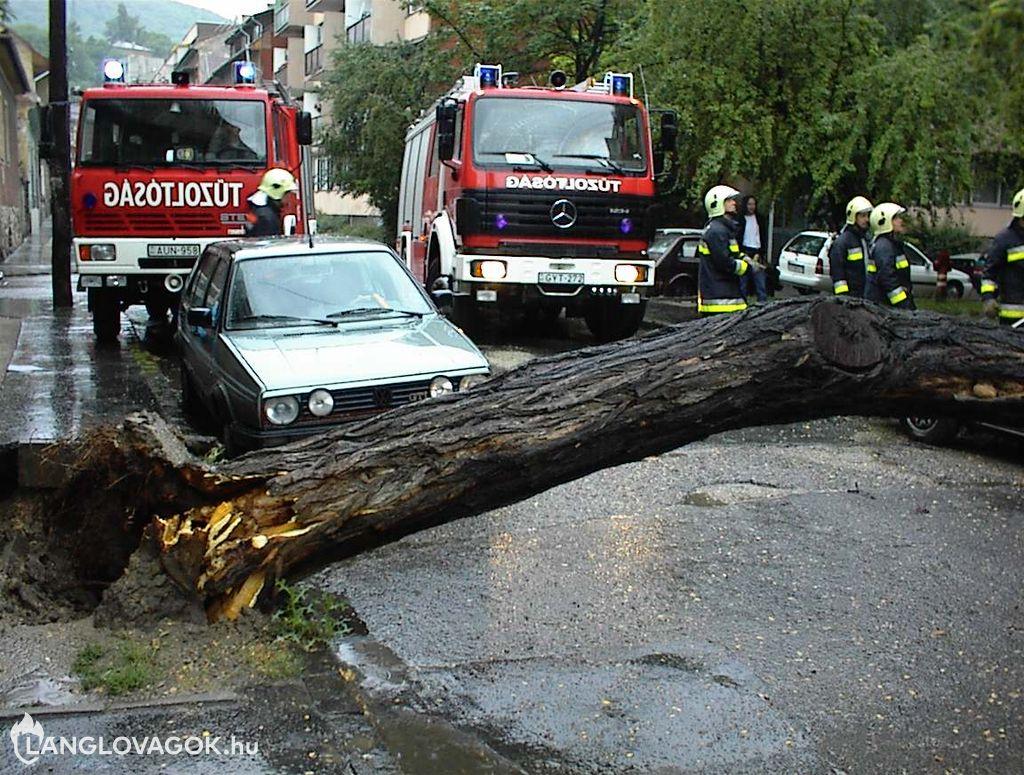 Személyautóra dőlt egy fa Budapesten