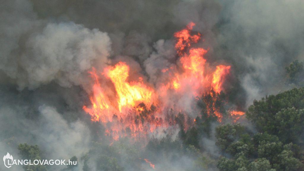 Erdőtüzek Magyarországon