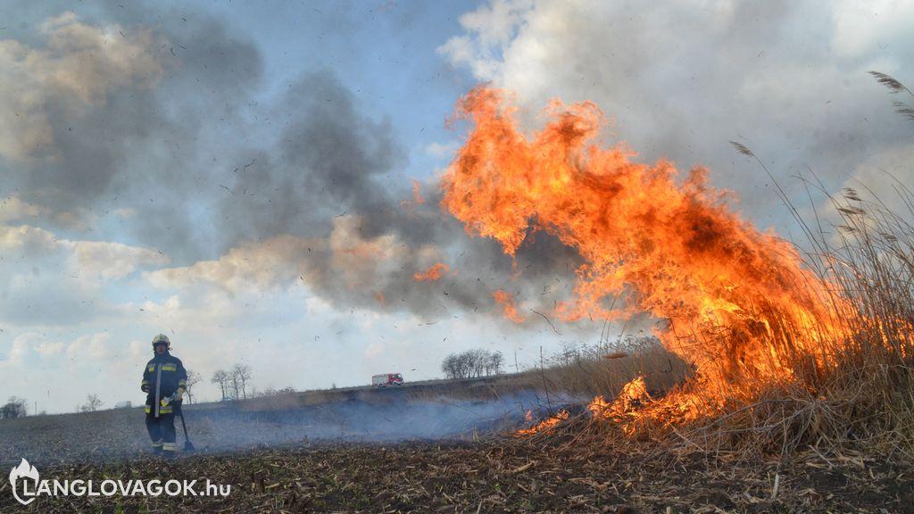 Összeférhetetlenség a hivatásos tűzoltóknál