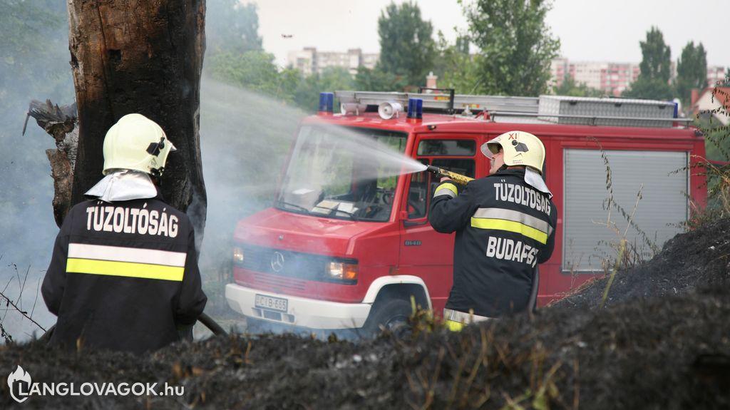 Mercedes-Benz gépjárműfecskendő [CIB-665]