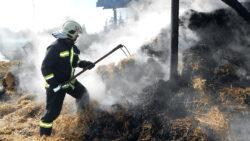 Beosztott tűzoltó Szegeden és Csongrádon