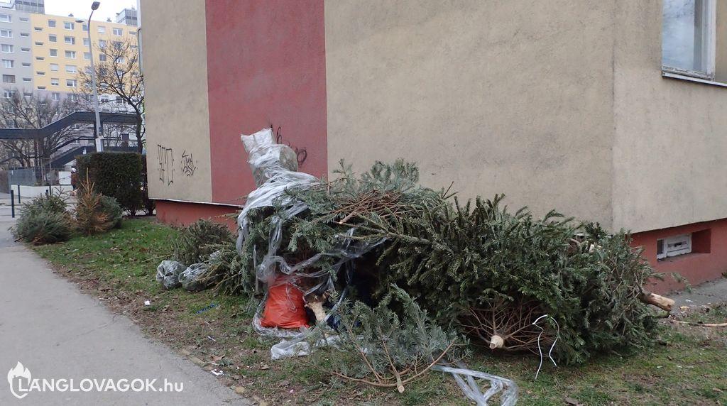 Tüzet várnak még ajándéknak a karácsonyfa alá?