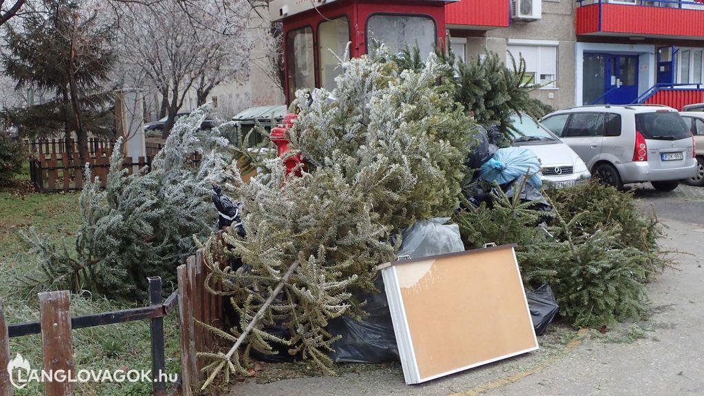 Tűzcsap a kiszolgált karácsonyfák fogságában