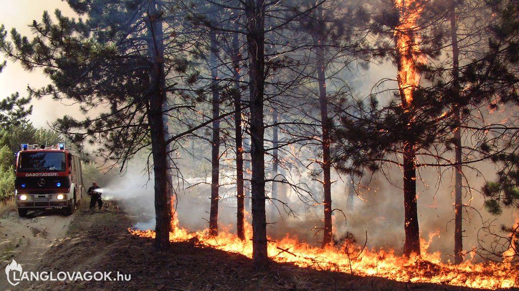 Erdők és tőzegterületek tüzeinek oltása